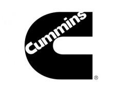 Запчасти на двигатели Cummins